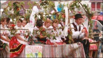 На Закарпатті живе 145 тисяч угорців