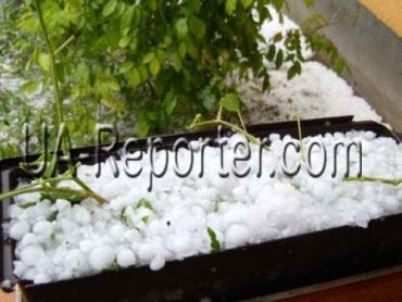 В Закарпатье из-за бури потеряна половина урожая