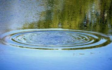 На Закарпатье в Тисе утонул мужчина