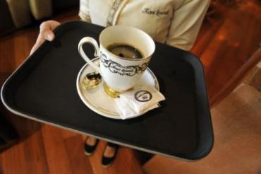 В Индонезии кофе готовят из азиатской пальмовой циветты