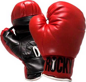 В Ужгороді відбудеться відкритий чемпіонат міста з боксу
