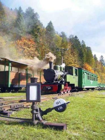 Збереження Боржавської вузькоколійки -це вже свято для професійних залізничників