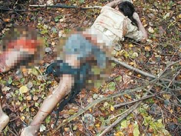 На закарпатца упала сухая ветка длиной около двух метров и убила его насмерть