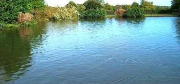 На водоеме в Мукачеве нашли утопленника
