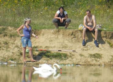 Закарпатские волонтеры очень надеяться, что смогут спасти травмированного лебедя