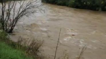 В Великоберезнянском районе уровень воды в Уже поднялся до максимума