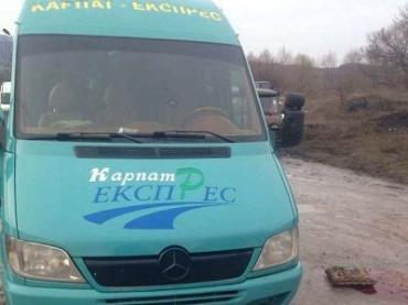 В Закарпатье микроавтобус смертельно травмировал пешехода