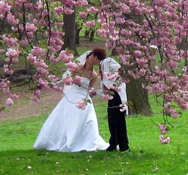 Объявлен конкурс на лучшее свадебное фото в Ужгородском замке