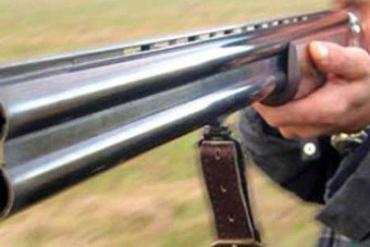 З рушниці застрелили трьох собак у селі Ратівці на Ужгородщині