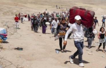 Африканцы дружною толпою идут в Европу через Закарпатье