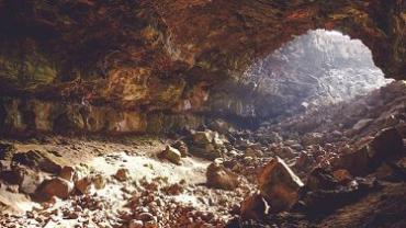 Ученые нашли новый вид животного в пещерах Туркменистана