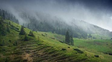 Літній відпочинок в Україні цього року став дорожче на 10-15%