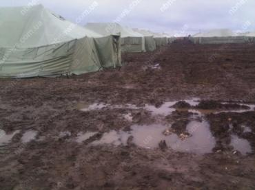 Условия пребывания 128 бригады с Закарпатья упростили ниже плинтуса