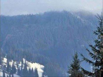 В Карпатах возможен сход снежных лавин