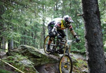Майже півтисячі велосипедистів з'їжджаються на закарпатську гору Гимбу