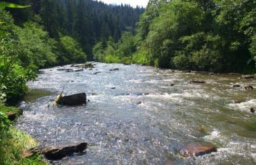 Закарпаття. Рівень води у річках та водоймах стабільно спадає