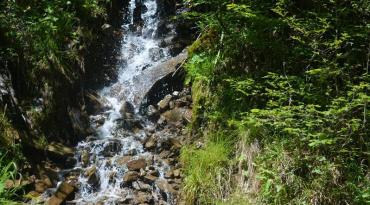 Джерело в Соймах, джерело в Квасах та водоспад Труфанець просто зачаровують.