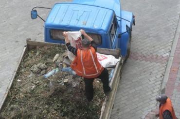 "Ужгород. Голуби атакують ""Новий район""!"
