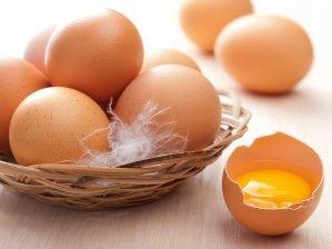 В Угорщині виявлені партії уражених фіпронілом курячих яєць
