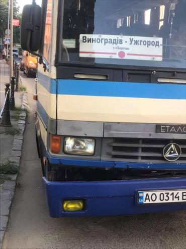 """У Берегові """"Мерседес"""" врізався у рейсовий автобус"""