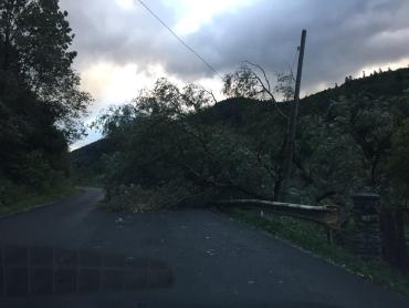 Прес-служба Закарпатської ОДА інформує про наслідки урагана