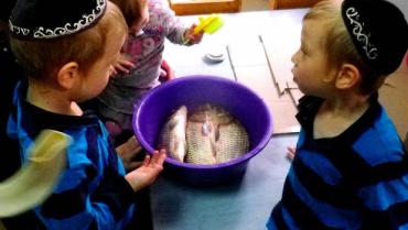 Євреї Закарпаття зготують найбільше в Україні блюдо з фаршированої риби