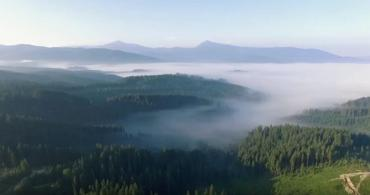 Карпати. Краса гір на закарпатській Рахівщині