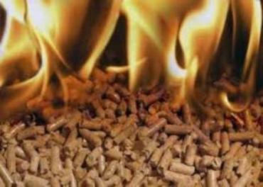 Азаров озадачил ужгородцев: заменить газ на пеллеты