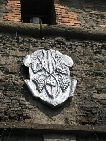 Герб Ужгорода с изображением виноградной лозы