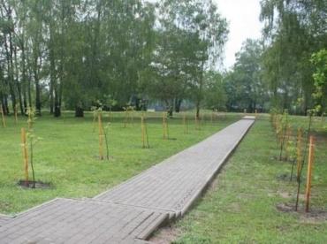 В закарпатском лесу появилась Шевченковская аллея
