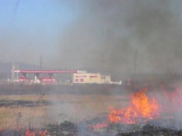 На Закарпатье значительно увеличилось количество пожаров