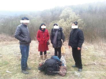 Пограничники Закарпатья «встретили» четырех «туристов» из Азии