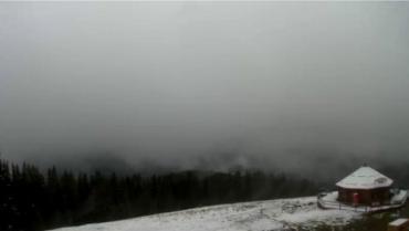 У гірських селах Карпат випав мокрий сніг