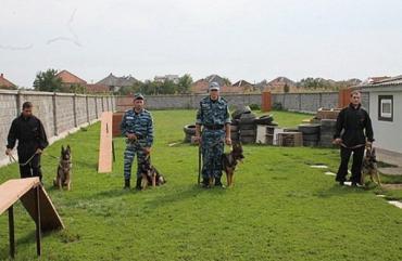 Закарпатской милиции подарили элитных служебных собак из питомника