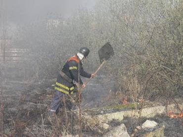 Экологическая инспекция предупредила поджигателей сухостоя о штрафах
