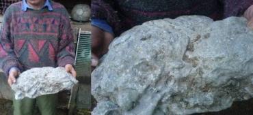 Житель Тячевского района демонстрирует странную находку