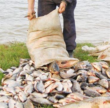 Обнаружили незаконную ловлю на территории заповедника в Рахове