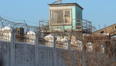 В Хустском районе впервые осужденный преступник получил отпуск из колонии