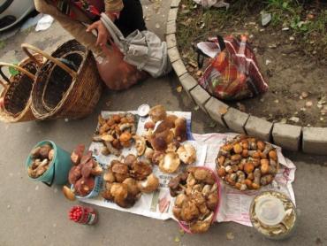 Импровизированная грибная ярмарка в Ужгороде растянулась на несколько метров