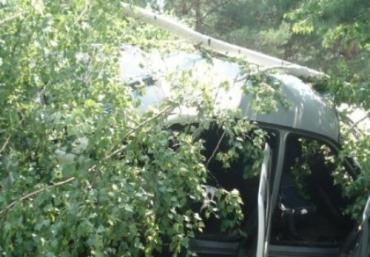 В Межгорском районе ВАЗ сошел с трассы и столкнулся с деревом