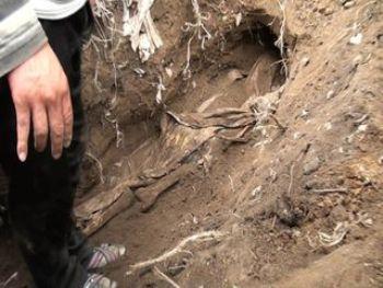 В Ужгородском районе дочь сама похоронила родную мать на огороде около дома