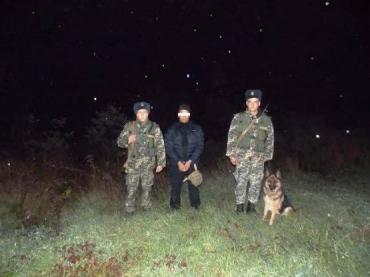 Пограничники Закарпатья обнаружили лазутчика на заборе