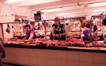 Як Африканська чума свиней стала економічною зброєю в Україні