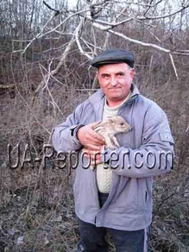 Закарпатський фермер вирощує диких тварин