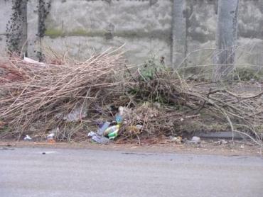 Міські служби наголошують: ці відходи потребують спеціального вивезення