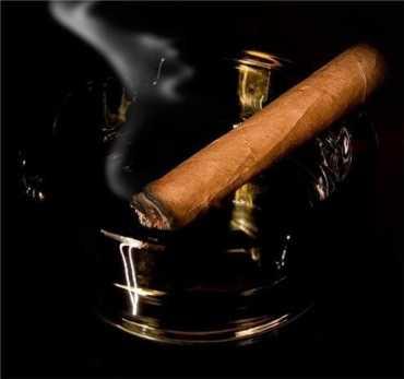 На Закарпатье посадят табак и сделают пробную партию сигар