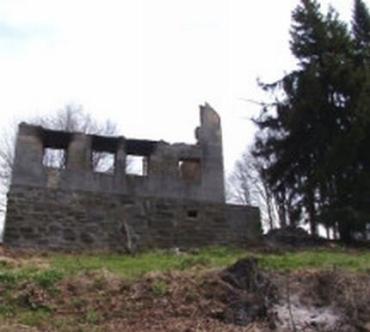 Вогонь знищив другий поверх притулку Явірник