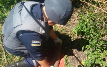 В покинутому будинку правоохоронці знайшли цілий арсенал боєприпасів