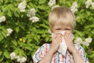 Препараты для аллергиков очень недешевые