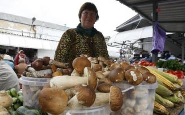 Как приготовить грибы, чтобы не отравиться